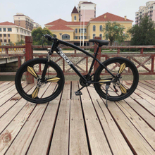 FANTAS-BIKE double disc brake 21 speed mountain bike 26''*17