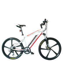 Fantas city hunter 001 36V250W electric bike