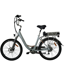 Fantas punk 003 foldable e bicycle